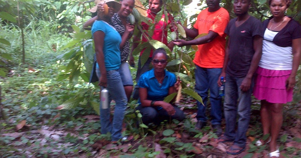 photo of Etienne and agents in cacao test plot