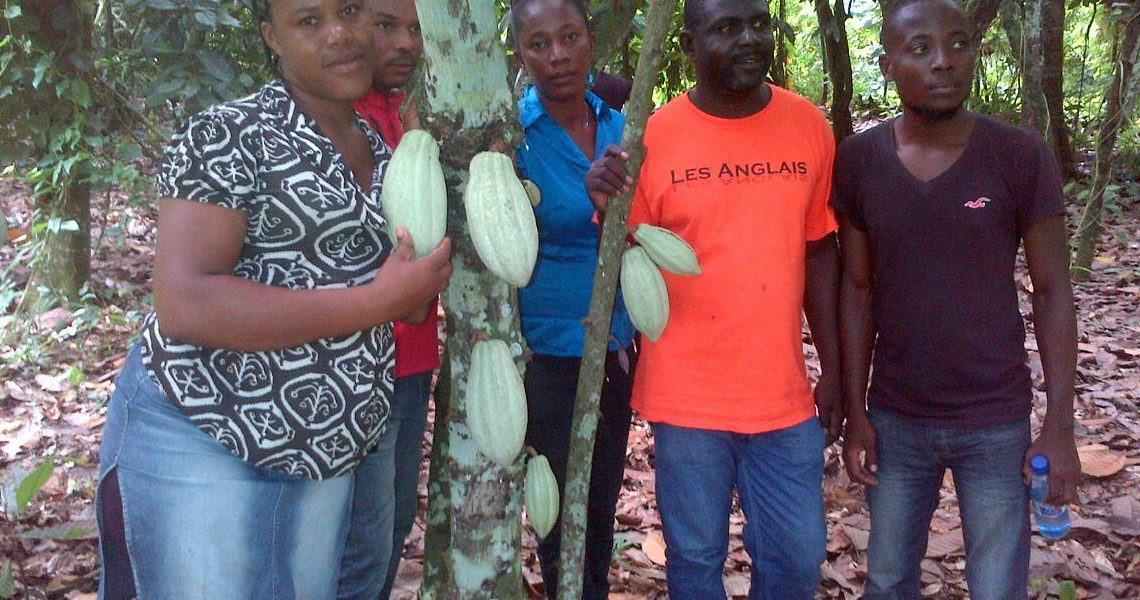 Interns with Etienne and cacao trees